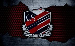 Picture wallpaper, sport, logo, football, Hokkaido Consadole Sapporo