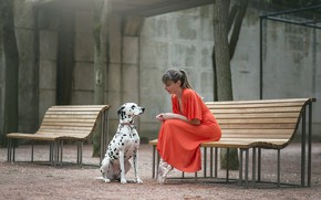 Picture girl, dog, bench