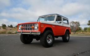 Picture asphalt, Ford, 1971, Wagon, Bronco, Baja Edition, Stroppe