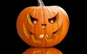 Picture Halloween, celebration, pumpkin, octuber