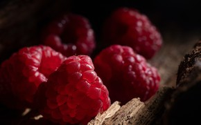 Picture berries, raspberry, the dark background