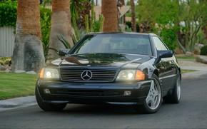 Picture Mercedes - Benz, R129, SL600
