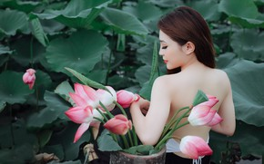 Picture leaves, girl, flowers, nature, back, profile, pink, Asian, Lotus