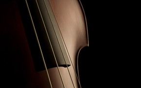 Picture macro, background, violin