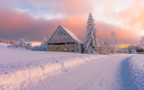Picture winter, road, snow, trees, landscape, nature, house, ate, Czech Republic
