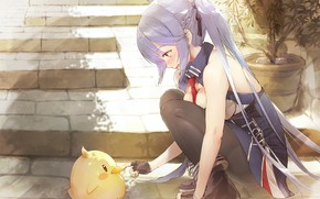 Picture girl, bird, Azur Lane