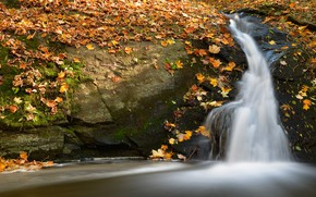 Picture autumn, leaves, light, stones, foliage, waterfall, yellow, falling leaves, maple, autumn