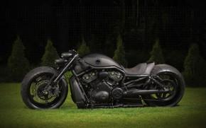 Picture Amazing, Black, Harley-Davidson, Motorbike