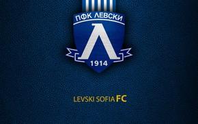 Picture wallpaper, sport, logo, football, Levski Sofia