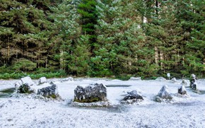Picture winter, forest, landscape, nature, stones, beauty, the first snow