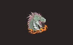 Picture fire, dragon, black background, Deyasa 346