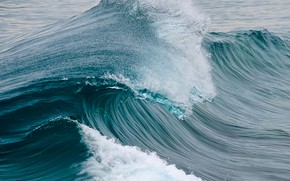 Picture sea, the ocean, wave