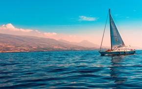 Picture sea, coast, yacht, sails, blue sky