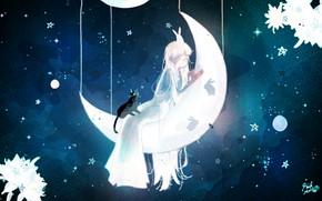 Picture cat, night, girl, rabbits, Crescent
