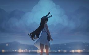 Picture sea, girl, twilight, ears