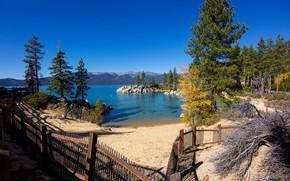 Picture beach, lake, shore
