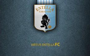 Picture wallpaper, sport, logo, football, Italian Seria A, Virtus Entella
