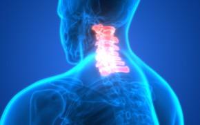 Picture pain, bones, neck, human figure, discomfort, vertebrae