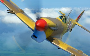 Picture Fighter, Spitfire, Supermarine Spitfire, RAF, The Second World War, Supermarine Spitfire Mk.Vc