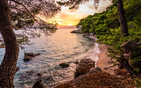 Picture sea, forest, trees, landscape, sunset, nature, stones, coast, Adriatica, The Adriatic sea