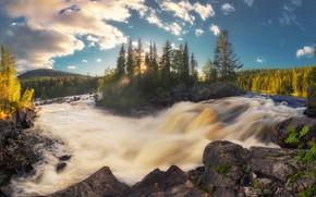 Picture forest, trees, river, island, waterfall, Russia, the threshold, Karelia, Sergei Lukanin, The Olanga River, Waterfall …