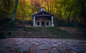 Picture autumn, forest, leaves, trees, tile, the door, ladder, stage, falling leaves, chapel, structure, entrance