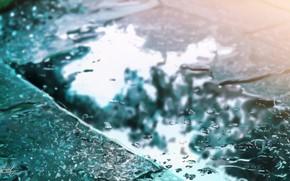Picture asphalt, puddle, bokeh