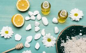 Picture stones, lemon, oil, chrysanthemum, Spa