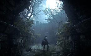 Picture nature, knight, Demon's Souls, Demon's Souls (PS5)