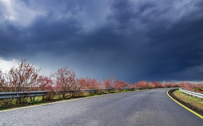 Picture road, the sky, nature