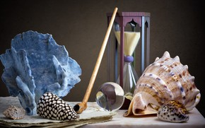 Picture style, paper, the dark background, table, tube, leaves, shell, still life, records, hourglass, composition