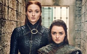 Picture Game of thrones, Aria, Stark, Game Of Thrones, Starkey, Arya, Sansa, Sansa, Season 8