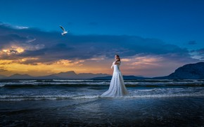 Picture rendering, surf, photoart, shore, Seagull, beach, blue, sea, girl