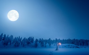 Picture winter, forest, girl, snow, traces, the moon, lantern, white robe