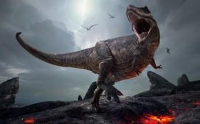 Picture graphics, dinosaur, grin, Tyrannosaurus