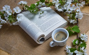 Picture flowers, coffee, branch, Cup, book