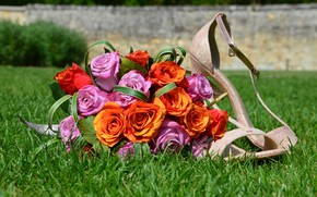 Picture Roses, weed, Wedding Shoes