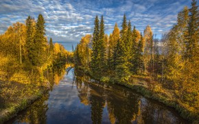 Picture autumn, forest, landscape, nature, reflection, river, Bank