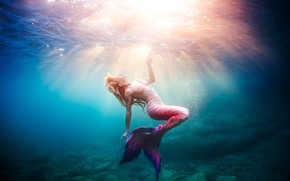 Picture sea, light, mermaid