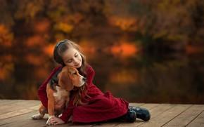 Picture dog, friendship, girl, friends, bokeh, hugs, Beagle, Ekaterina Borisova