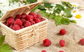 Picture leaves, raspberry, berry, basket