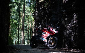 Picture forest, ducati, panigale 899