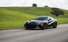 Picture Ferrari, Green, Black, Scuderia, Berlinetta, F12