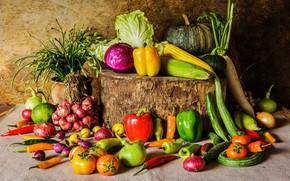 Wallpaper stump, corn, bow, pumpkin, pepper, vegetables, tomatoes, carrots, cabbage, cucumbers, bulb
