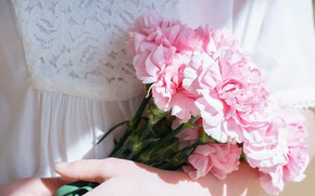 Picture girl, flowers, hands, clove