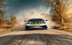 Picture road, speed, Lamborghini, Aventador, LP750-4 SV, Alitalia Tribute, THOMAS VAN ROOIJ