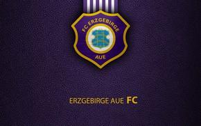 Picture wallpaper, sport, logo, football, Bundesliga, Erzgebirge Aue