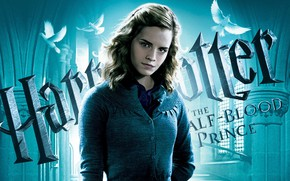 Picture girl, Hermione Granger, Harry Potter and the half-blood Prince, Harry Potter and the Half-Blood Prince