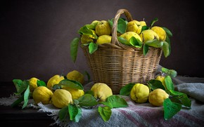 Picture the dark background, food, dishes, fruit, still life, basket, a lot, composition, quince, quince