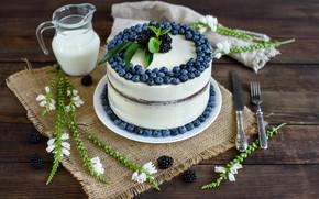 Picture berries, blueberries, cake, decoration, cream, dessert